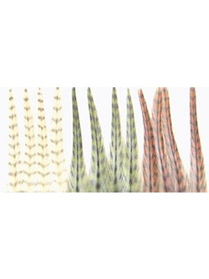 Dry Fly Hackle Mini Pack