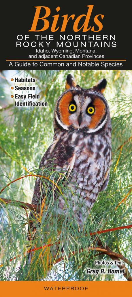 Farcountry Quick Reference Guides-Birds