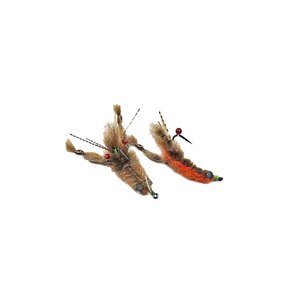 PUGLISI Crayfish #4 - Root Beer