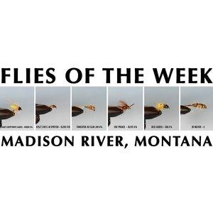 MRFC Flies of the Week - 5/12/2018