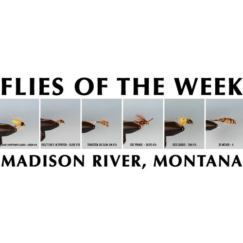 MRFC Flies of the Week - 5/12/2018