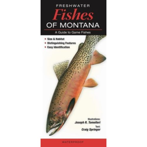 Fishes Quick Reference Guides