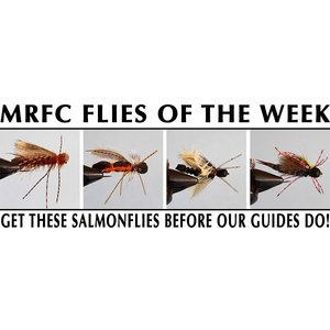 MRFC Flies of the Week - 6/02/2018
