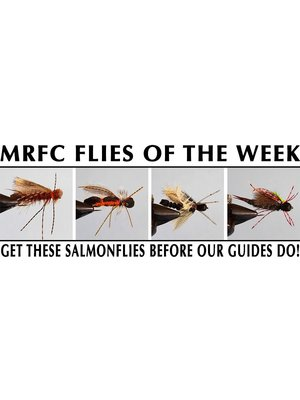 MRFC Flies of the Week - 6/02/2018