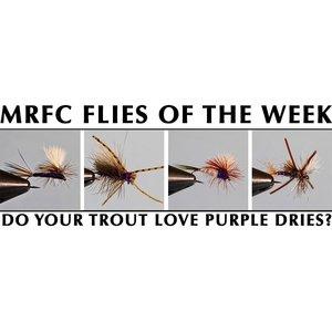 MRFC Flies of the Week - 6/09/2018