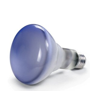 Daylight Replacement Bulb