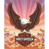 Ande Rooney Harley Davidson Eagle W/Clouds Sign