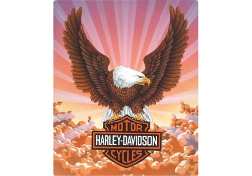 Ande Rooney Harley Davidson Eagle W/Clouds Sign
