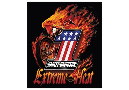 Ande Rooney Harley Davidson Extreme Heat Sign
