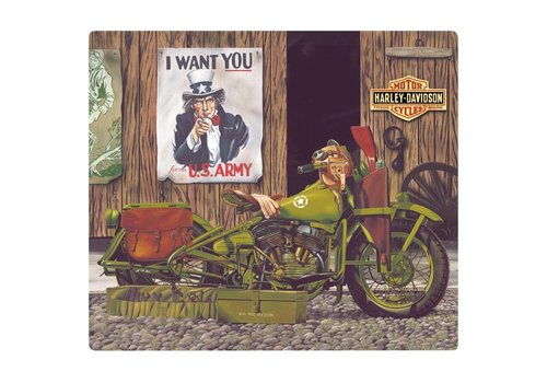 Ande Rooney Harley Davidson Freedom