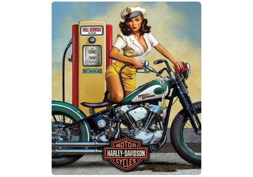Ande Rooney Harley Davidson Full Service
