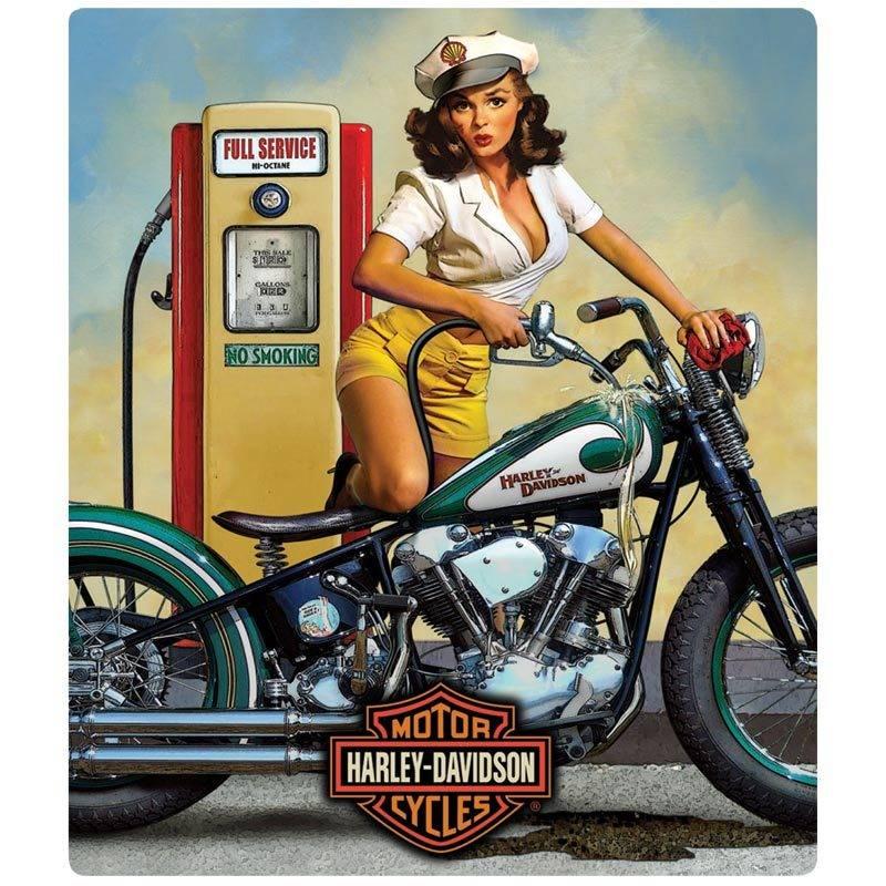Harley Davidson Full Service