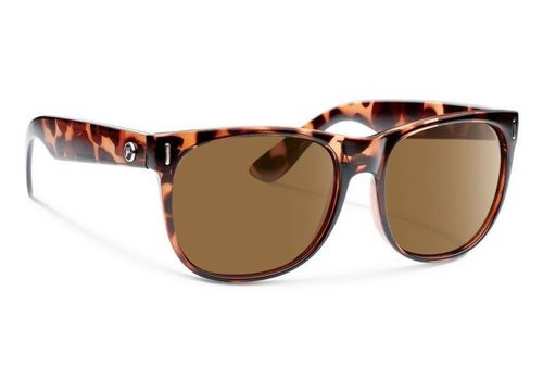 Forecast AVERY Tortoise With Brown Lens