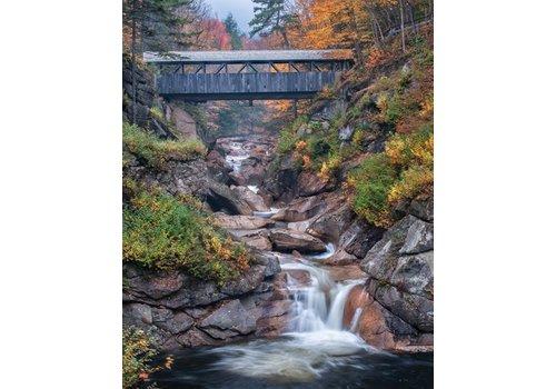 Albany Covered Bridge Puzzle