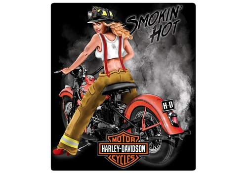 Ande Rooney Harley Davidson® Smokin' Hot Tin Sign