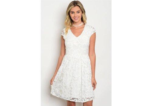 Ivory Lace Sleeveless Dress