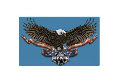 Ande Rooney Harley Davidson Eagle Banner Embossed Sign