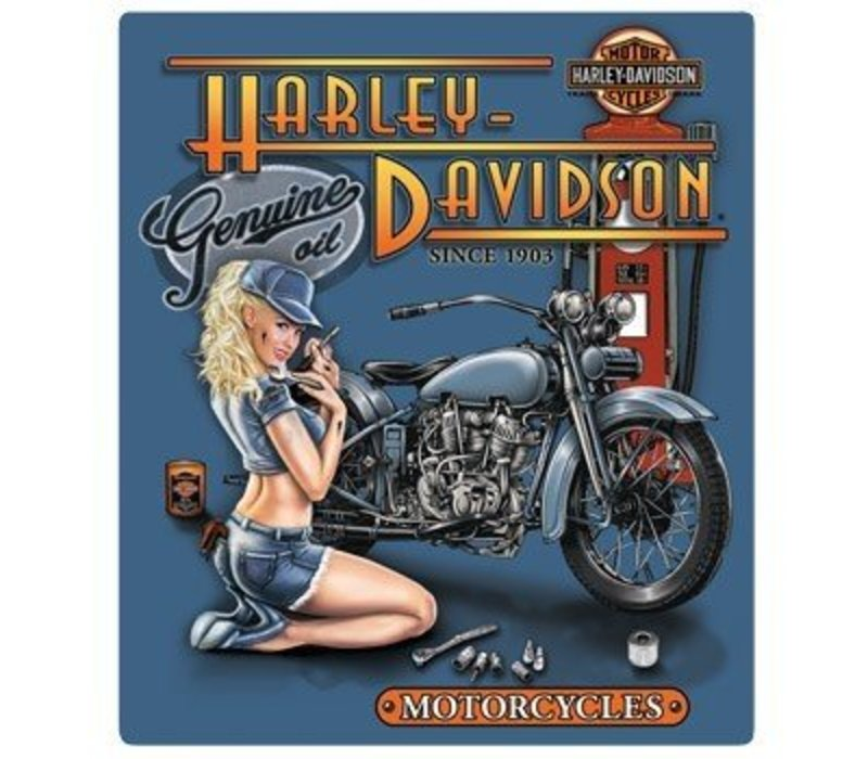 Harley Davidson Mechanic Babe Sign
