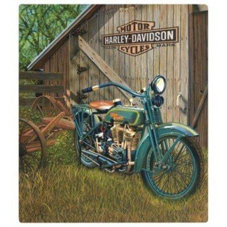 Harley Davidson 1923 Flat Head Twin