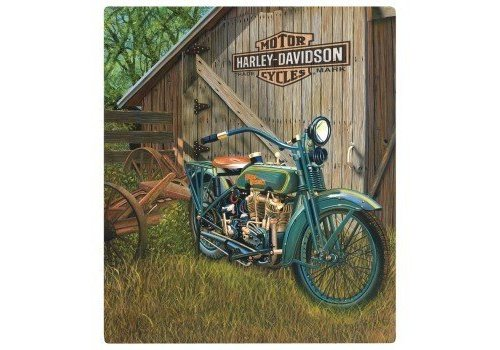 Ande Rooney Harley Davidson 1923 Flat Head Twin