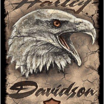 Harley Davidson® Eagle Card Tin Sign