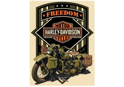 Ande Rooney Harley Davidson Freedom Green
