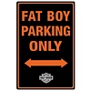 Ande Rooney Harley Davidson Fat Boy Parking