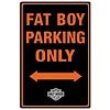 Ande Rooney Harley Davidson Fat Boy Parking