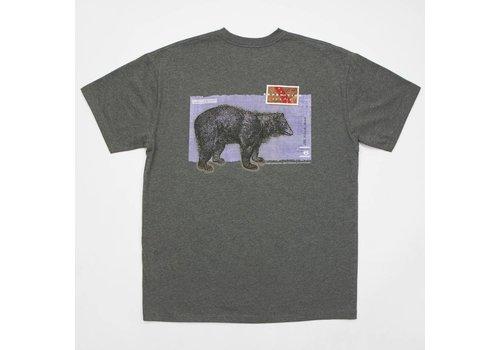 Southern Marsh Southern Marsh Black Bear