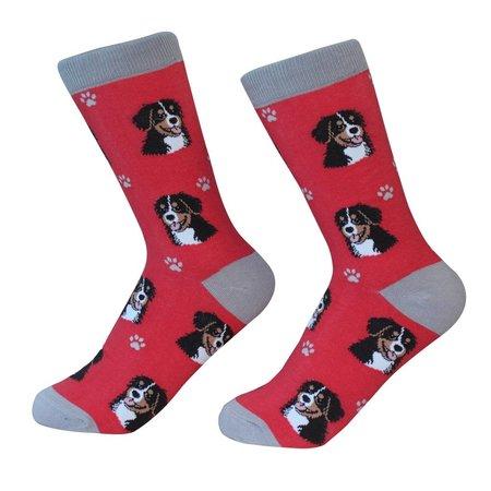 Bernese Mt Dog Socks