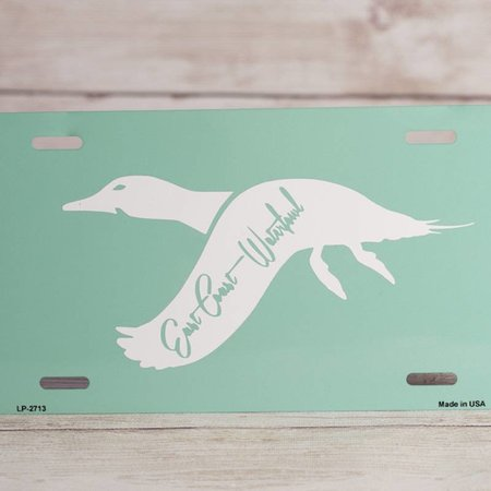 Teal Pintail License Plate