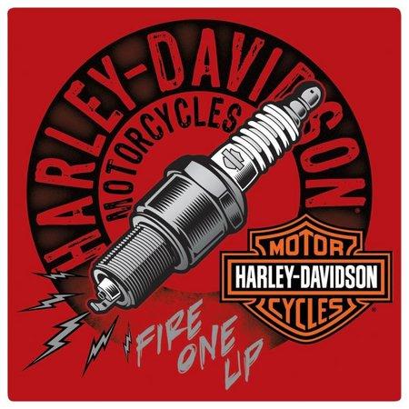 Harley Davidson® Spark Plug