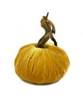 Butter Pumpkin