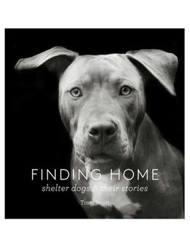 Finding Home: Shelter Dogs Book