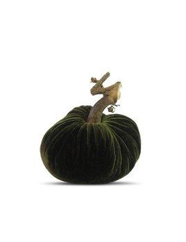 Forest Pumpkin