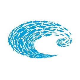 Costa Del Mar Costa Blue Logo Schoolin Decal Large
