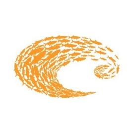 Costa Del Mar Costa Orange Logo Schoolin Decal Large