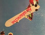 SnowBoard HardGoods