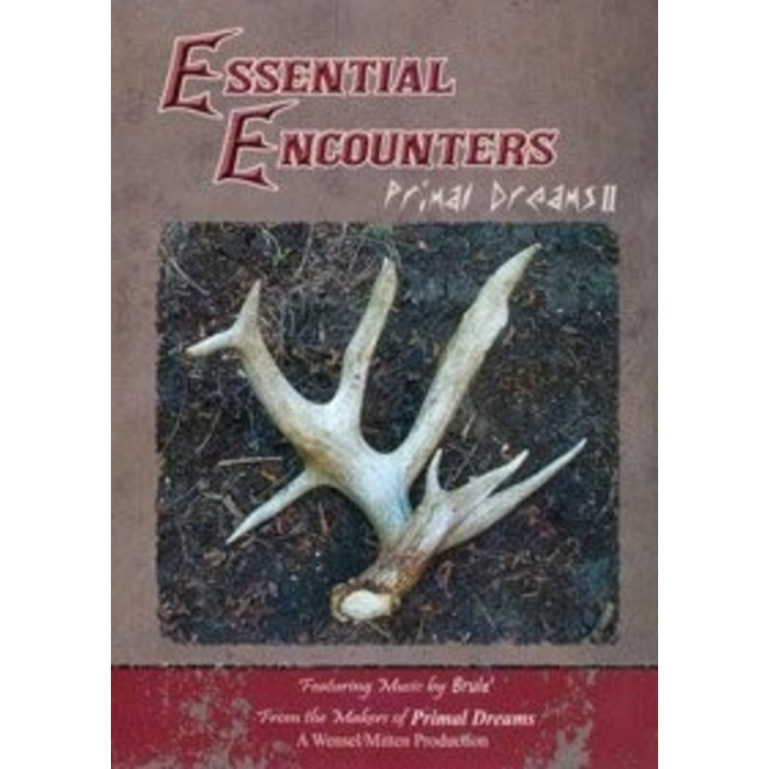 Essential Encounters Primal Dreams 2