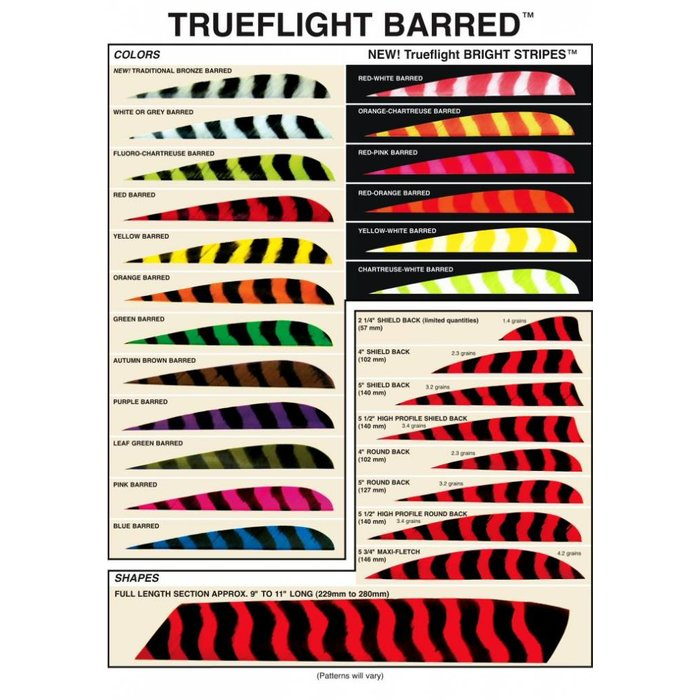 "LW 5"" Trueflight Feathers"