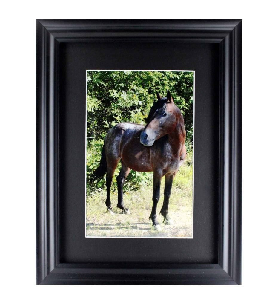 "*LS ""DR. PHILL II, CHOCTAW STALLION"" Framed Matted Print LIMITED EDITION"