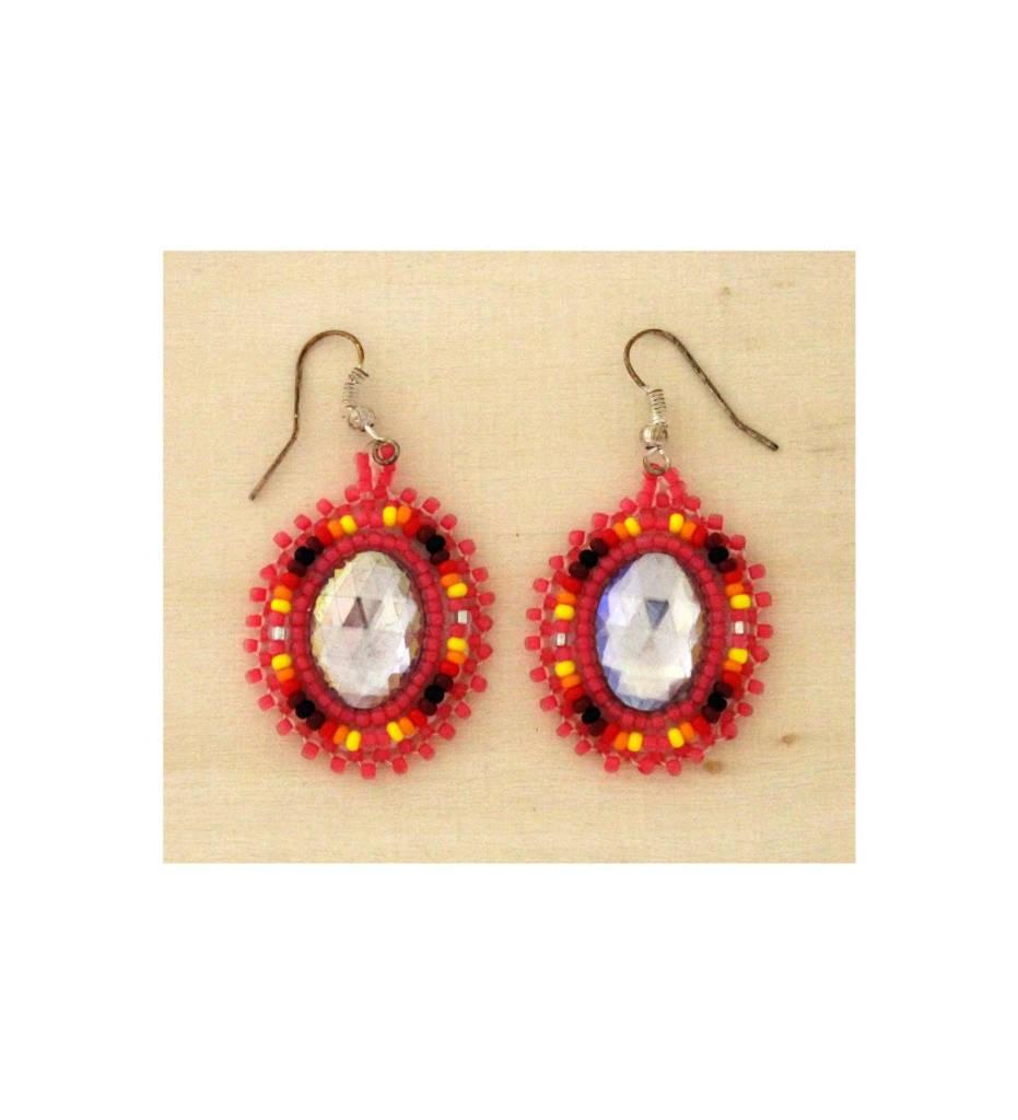 SJ Multi Colored Earrings