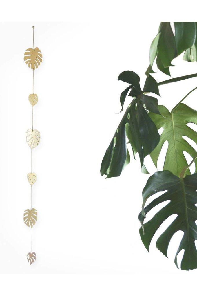 Natalie Joy Monstera Deliciosa 6 Leaf Vine