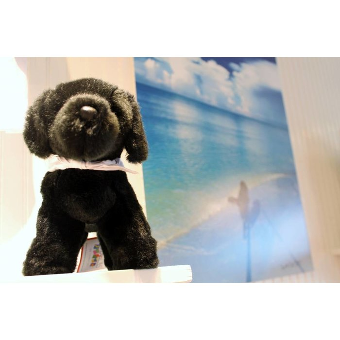 Small Huckleberry Dog with On Island bandanna