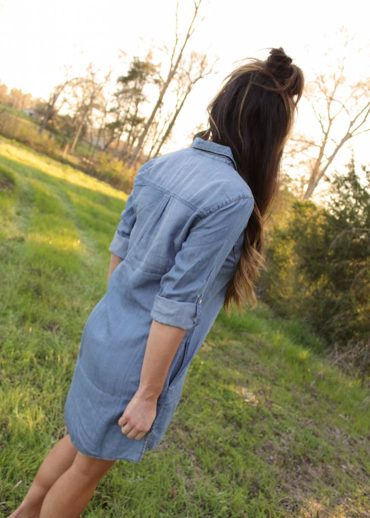 The Etta Denim Dress