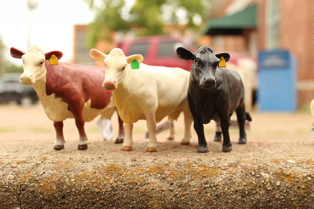 Little Buster Toys Charolais Cow