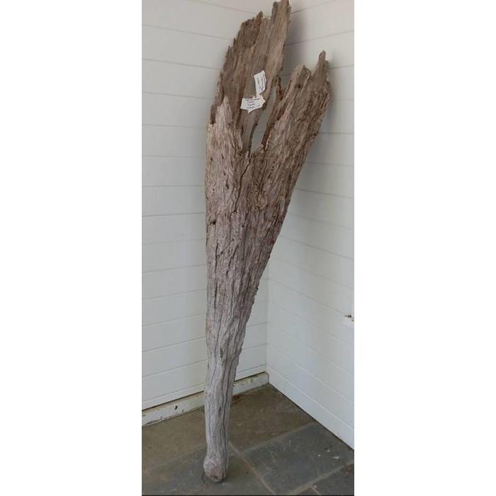 LG Hollow Driftwood