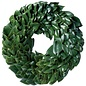 All Green Magnolia Wreath 18""