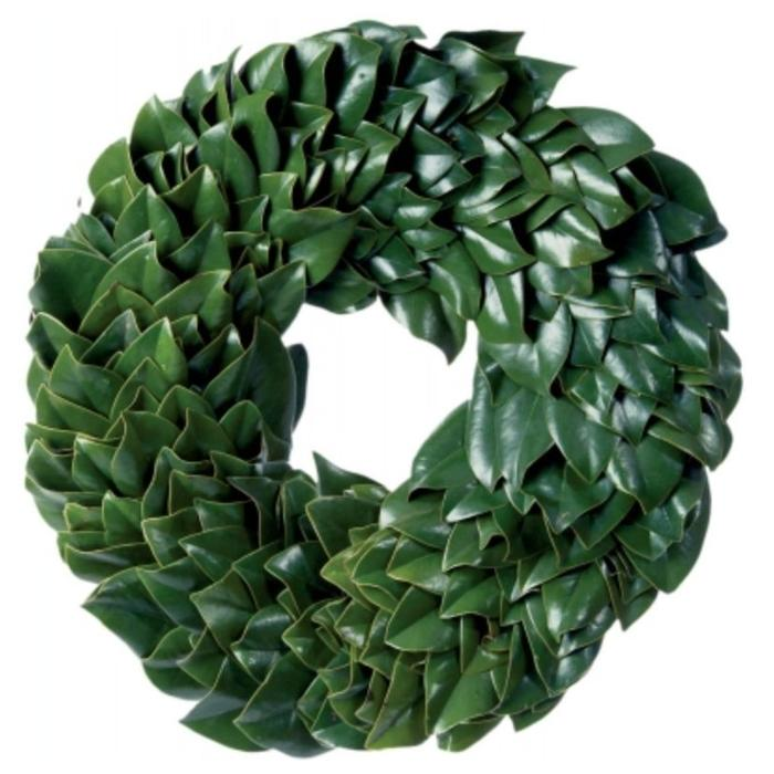 All Green Magnolia Wreath 30""
