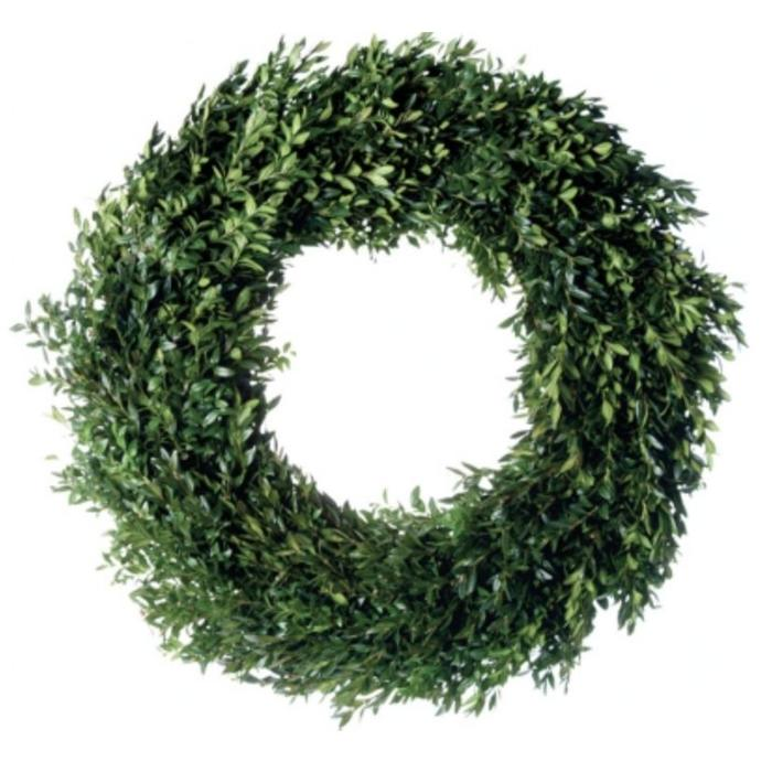 Fresh Boxwood Wreath 18""